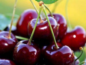 Bu gıdalar kanserden korunmanıza yardımcı!